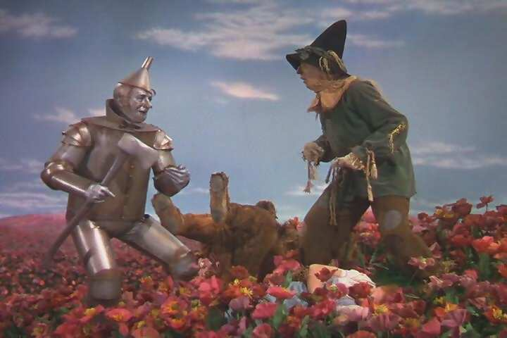 agoldenwestclothing.files.wordpress.com_2010_05_in_the_poppy_field_the_wizard_of_oz2.jpg
