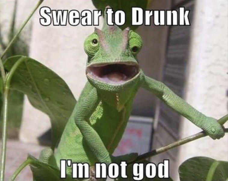 drunk.jpeg