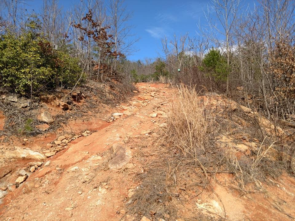 random trails 2.jpg